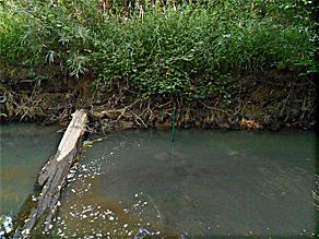 濒危贝类栖息地U26-001溶解氧记录器应用